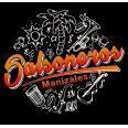 SALSONEROS.COM
